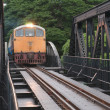 Train running on the bridge — Stock Photo