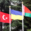 Turkey, Ukraine, Belarus flags — Stock Photo