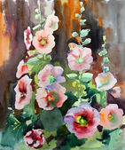 Watercolor painting of the beautiful flowers mallow. — Stock Photo