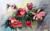 Watercolor painting of the beautiful flowers. — Stock Photo