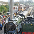 Stock Photo: Pacifics in steam