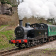 Stock Photo: Scenic steam train