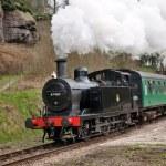 Scenic steam train — Stock Photo