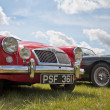 MG sports car line up in the sun - 图库照片