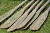 Remos en suelo — Foto de Stock