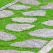 Stone path on green grass — Stock Photo #11271631