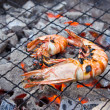 Grilled shrimp on the stove — Stock Photo
