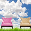 Pink and cream sofa on green grass against blue sky — Stock Photo