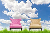 Pink and cream sofa on green grass against blue sky — Стоковое фото