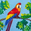 Poster color drawing red macaw — Stock Photo