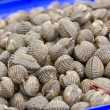 Stock Photo: Fresh cockle in market