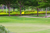 Flag on green in golf course — Stock Photo