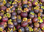 Mangosteen delicious thai fruit — Stock Photo