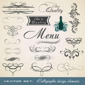 Calligraphic Element Set — Stock Vector
