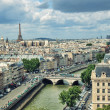 View of Paris — Stock Photo #13612482