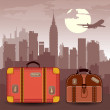 Suitcases for travel — Stock Vector #11955297