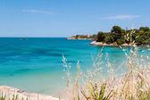 Beautiful coast on the Blue Sea — Stock Photo