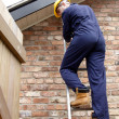 A workman up a ladder — Stock Photo