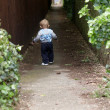 A baby boy walking down a lane — Stock Photo