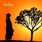 India-5 — Stock Vector