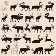 Reindeer-set — Stockvektor