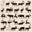 Stock Vector: Reindeer-set