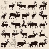Reindeer-set — Stock Vector