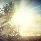 Grunge palm-9 — Φωτογραφία Αρχείου