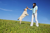 Dog trainer — Stock Photo