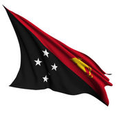 Papua New Guinea flag render illustration — Stock Photo