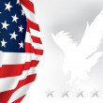 American flag Eagle Stars Vector — Stock Vector