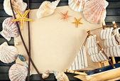 Cornice di conchiglie. — Foto Stock