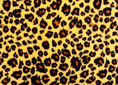 Leopard skin texture. — Stock Photo