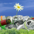 Environmental conservation concept. Garbage with growing daisy — Stock Photo #11133049