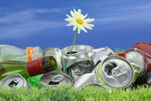 Environmental conservation concept. Garbage with growing daisy — Stock Photo