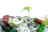 Environmental conservation concept. Garbage with growing plant — Stock Photo