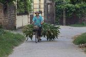 Vietnamese on Bicycle — Stock Photo