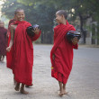 Boy Monks in Myanmar — Stock Photo