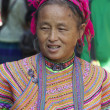 Vietnamese Flower Hmong Ethnic Minority — Stock Photo #11395512