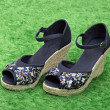 Female shoes in fashion concept on grass — Stock Photo