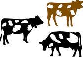 Cow collection — Stock Vector