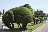 Thailand, Bangkok, Yai District, Arun Temple (Wat Arun Ratchawararam), tree shaped like an elephant in the garden — Zdjęcie stockowe