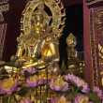 Thailand, Chiang Mai, Prathat Doi Suthep Buddhist temple, golden Buddha statue — Stock Photo #11112356
