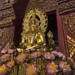 Thailand, Chiang Mai, Prathat Doi Suthep Buddhist temple, golden Buddha statue — Stock Photo #11112389