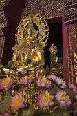 Thailand, Chiang Mai, Prathat Doi Suthep Buddhist temple, golden Buddha statue — Stock Photo