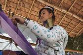Tajlandia, chiang mai, karen długą szyję wzgórzu wioski plemienia (kayan lahwi), długą szyję kobiety w tradycyjnych strojach. kobiety umieścić pierścienie mosiężny na szyi, gdy są one 5 lub 6 lat — Zdjęcie stockowe
