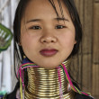 Thailand, Chiang Mai, Karen Long Neck hill tribe village (Kayan Lahwi), Long Neck woman in traditional costumes. Women put brass rings on their neck when they are 5 or 6 years old and increase the num — Stock Photo