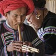 Thailand, Chiang Mai, Karen Long Neck hill tribe village (Kayan Lahwi), Karen man in traditional costumes playing a flute — Stock Photo #11312178