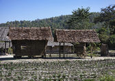 Thailand, Chiang Mai, view of the Karen Long Neck Hill Tribe village — Stock Photo