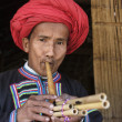 Thailand, Chiang Mai, Karen Long Neck hill tribe village (Kayan Lahwi), Karen man in traditional costumes playing a flute — Stock Photo #11475097